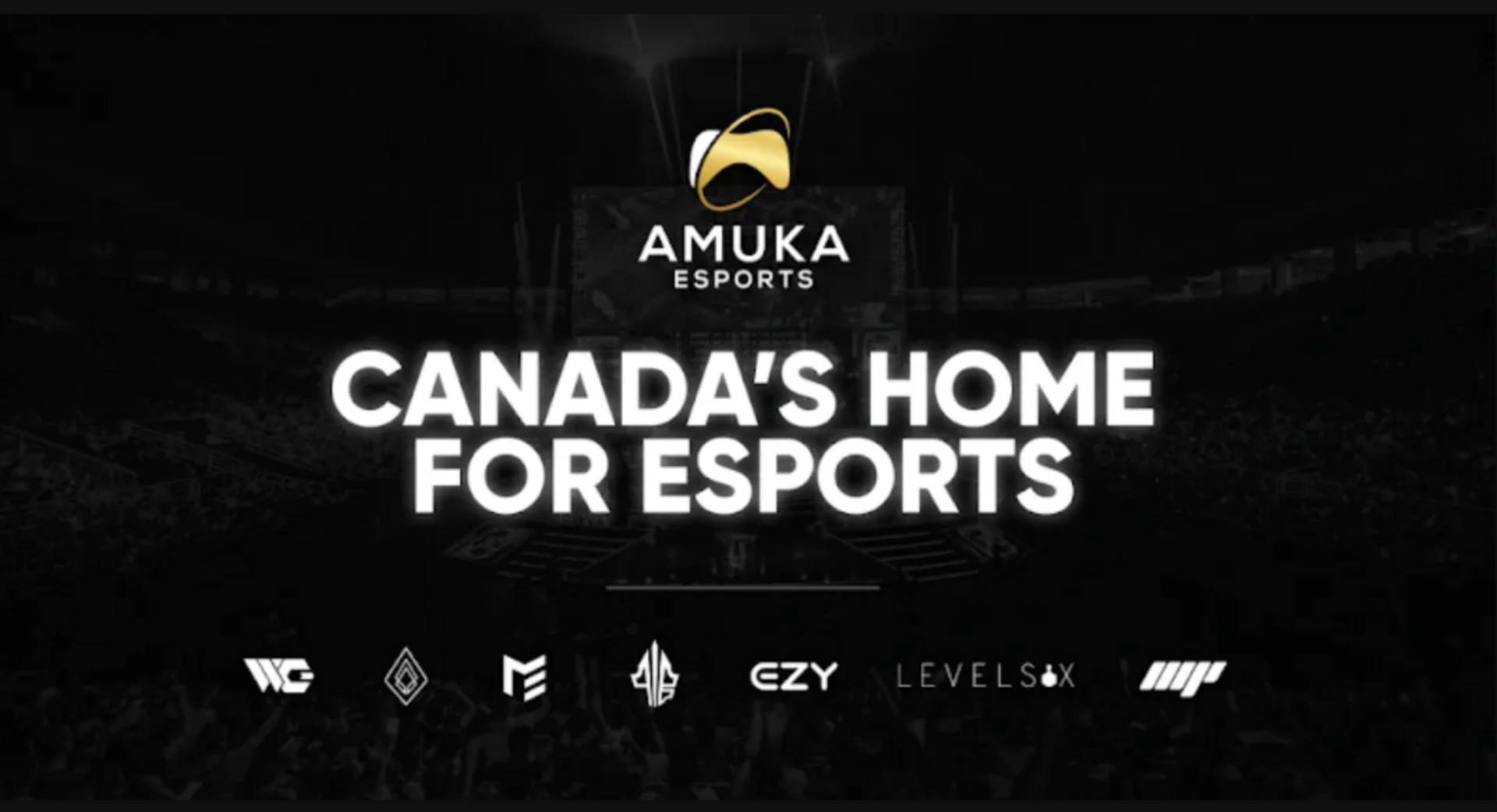 Investment Opportunity From Amuka Esports